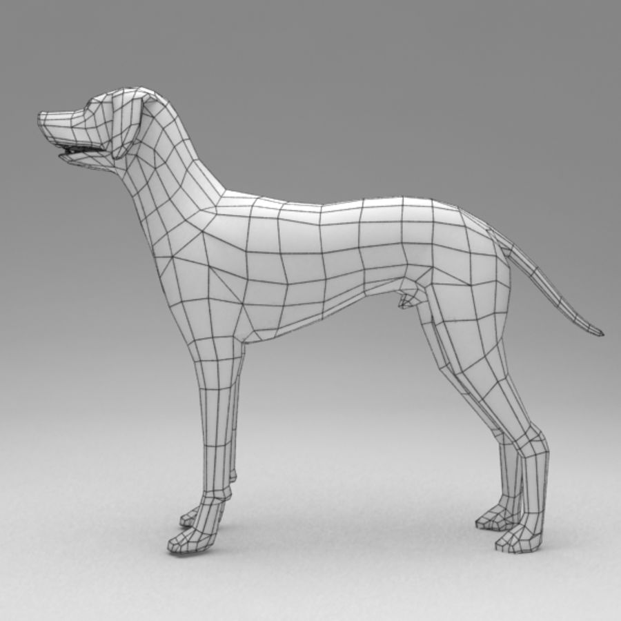 Dalmatian rigged royalty-free 3d model - Preview no. 9