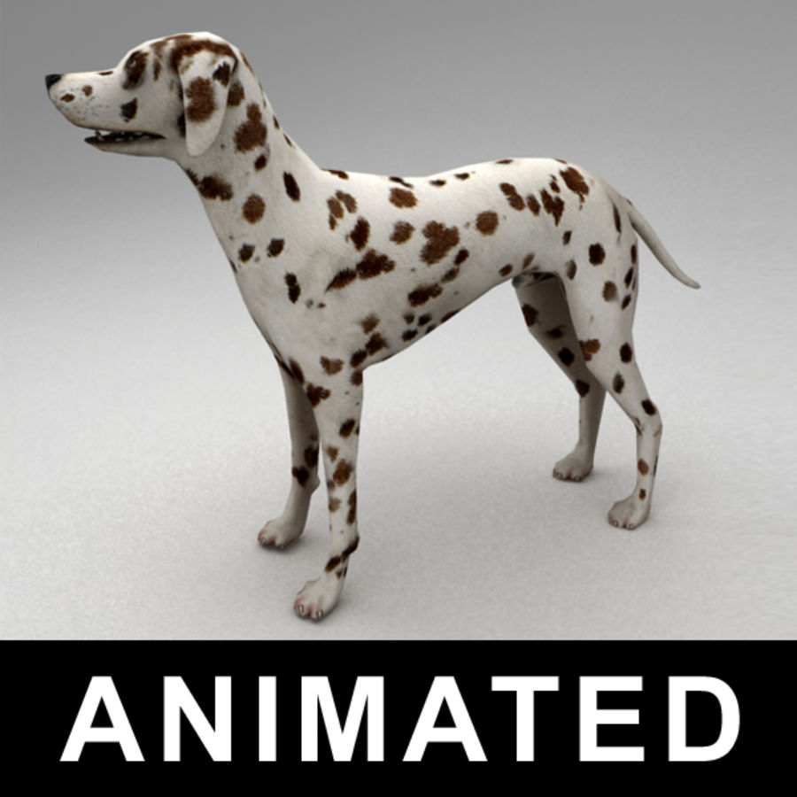 Dalmatian rigged royalty-free 3d model - Preview no. 1