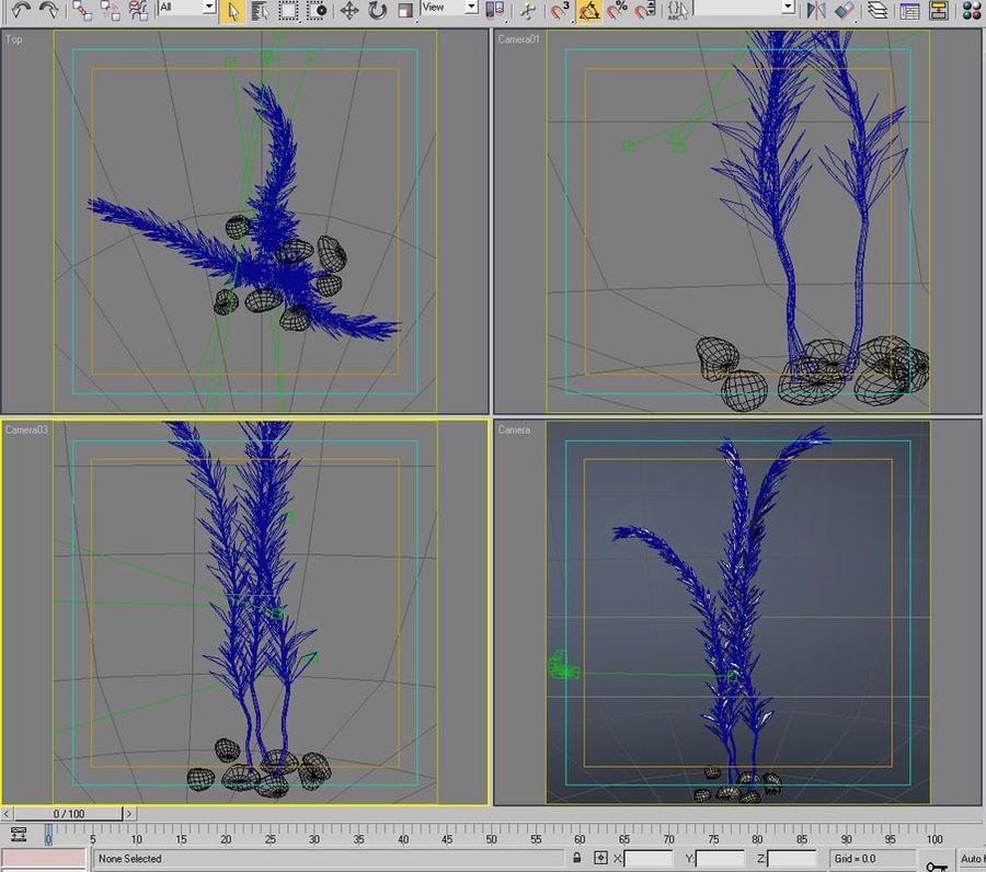 Aqua plant_01 royalty-free 3d model - Preview no. 6