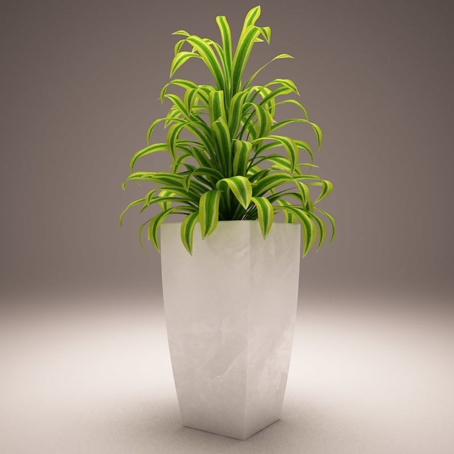 Plant and vases royalty-free 3d model - Preview no. 2