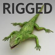 Green lizard rigged 3d model