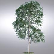 HI Realistic Series Tree - 006 3d model