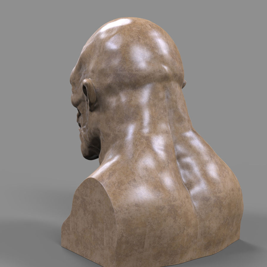 Orc Head 3D Print royalty-free 3d model - Preview no. 7