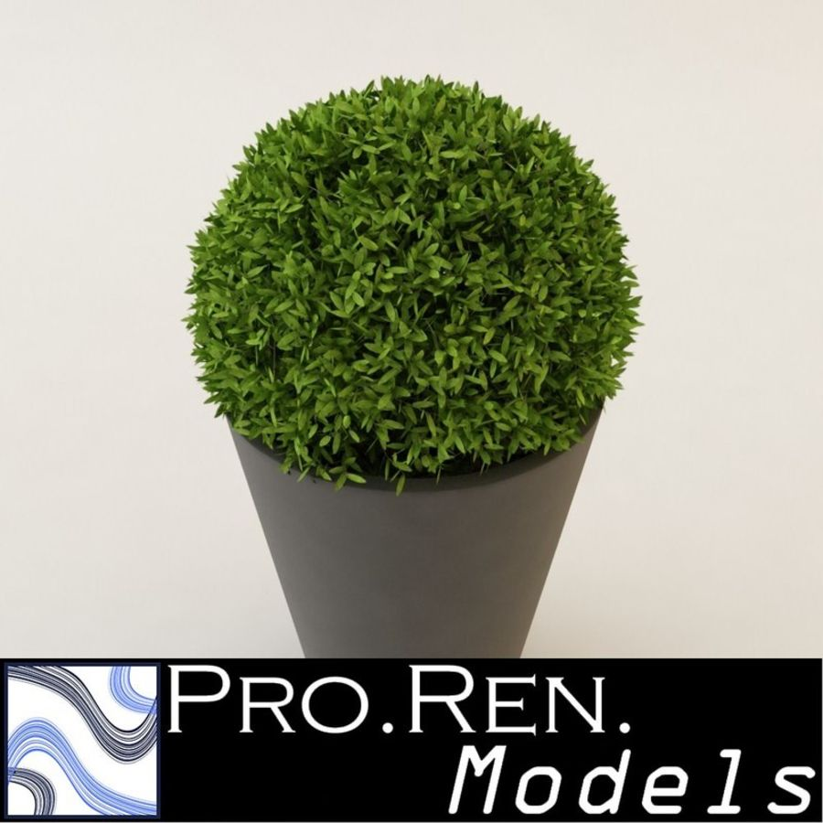 Plant for architectural interiors type D royalty-free 3d model - Preview no. 1
