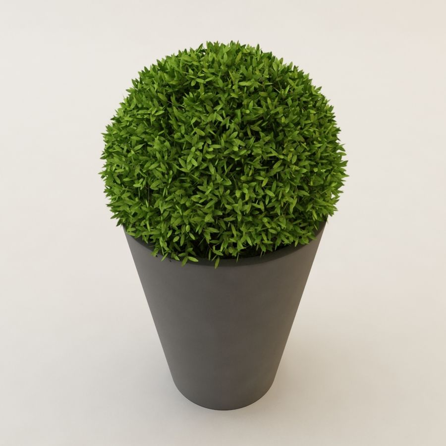 Plant for architectural interiors type D royalty-free 3d model - Preview no. 2