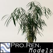 Plant for architectural interiors type A 3d model