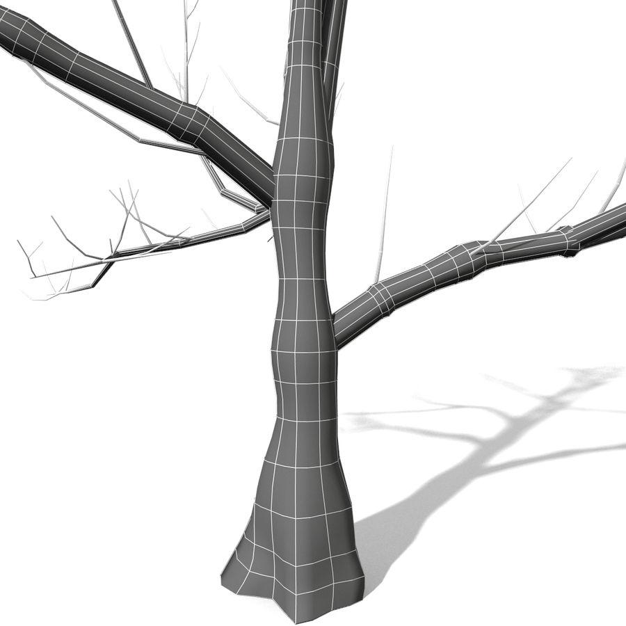 Дерево без листьев royalty-free 3d model - Preview no. 5