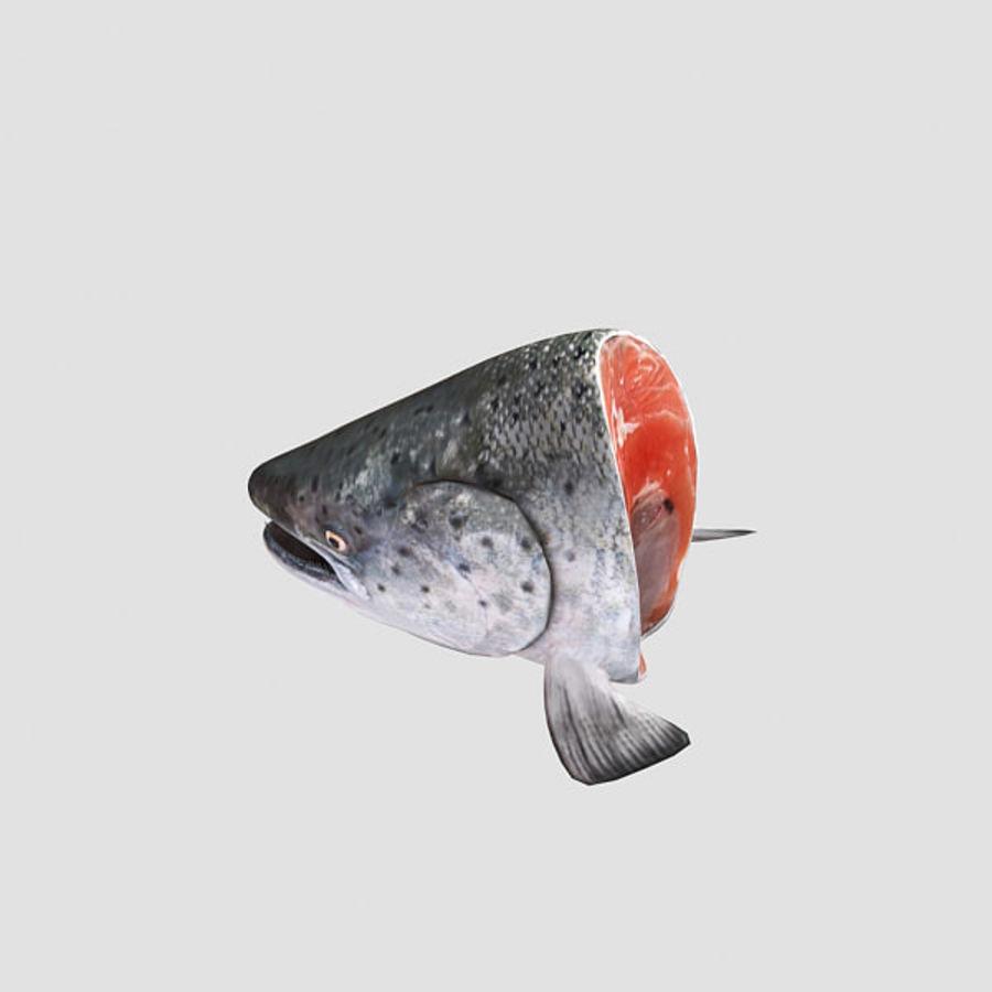 baş somon balığı royalty-free 3d model - Preview no. 4