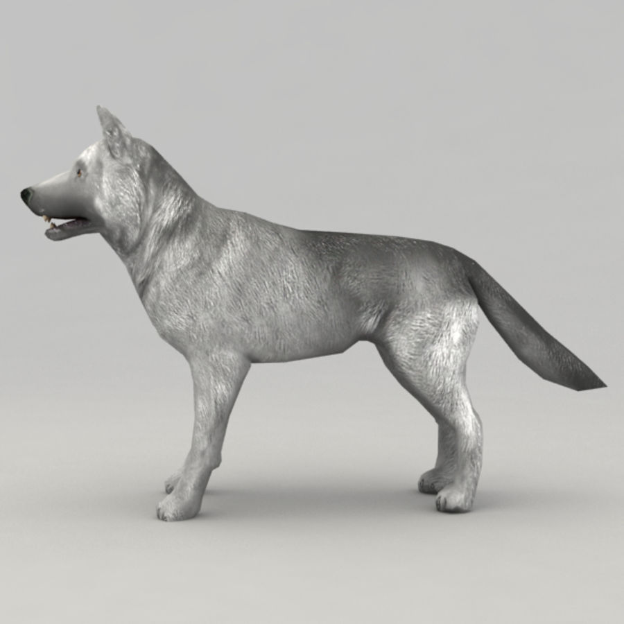 Rigged Wolf royalty-free 3d model - Preview no. 3