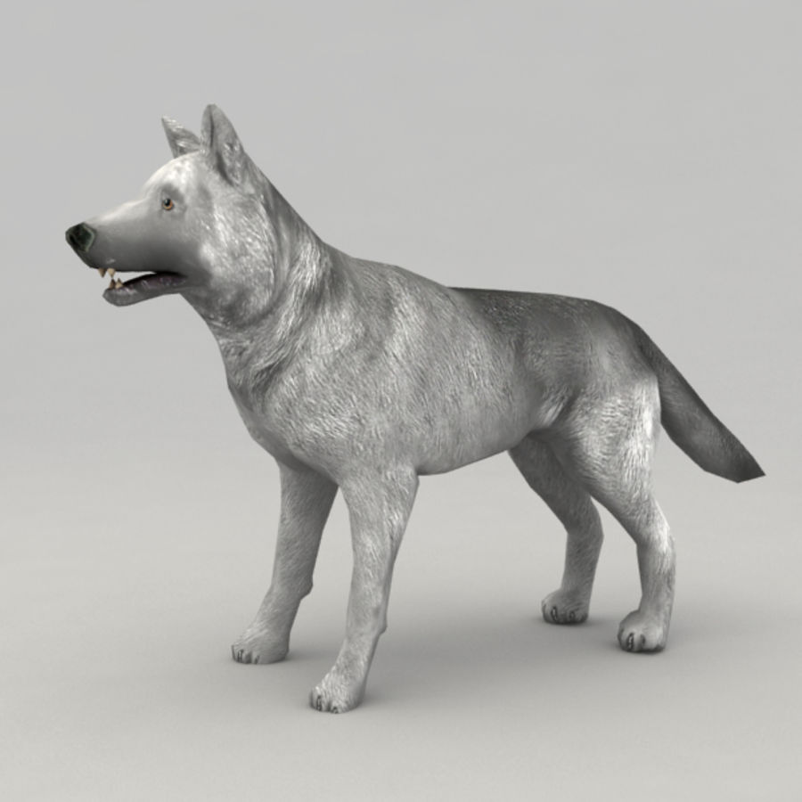 Rigged Wolf royalty-free 3d model - Preview no. 2