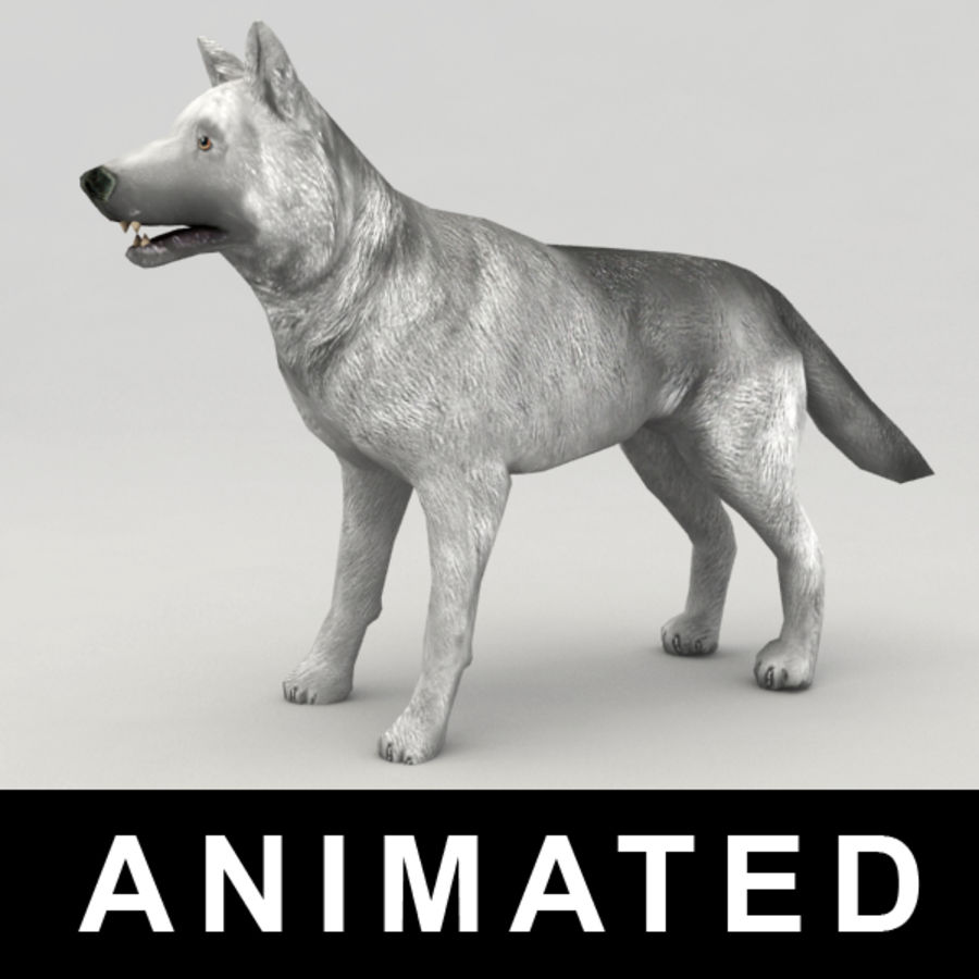 Rigged Wolf royalty-free 3d model - Preview no. 1