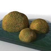 Коралловая скала 2 3d model