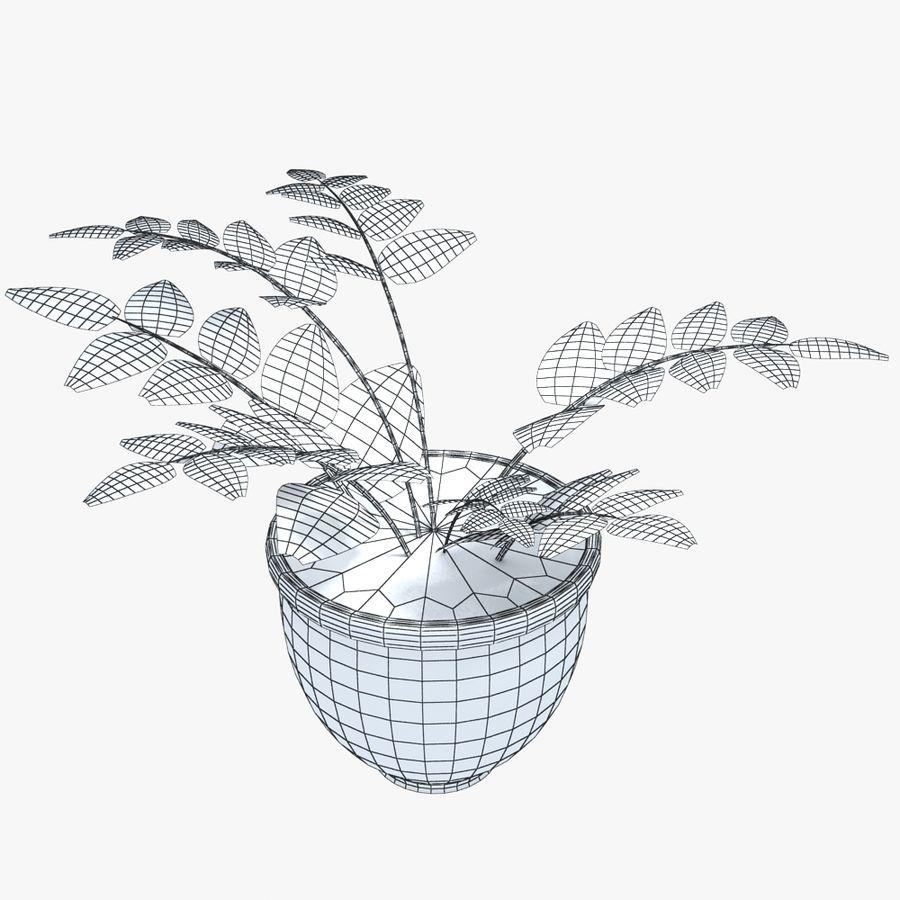 鉢植えの家の植物 royalty-free 3d model - Preview no. 3