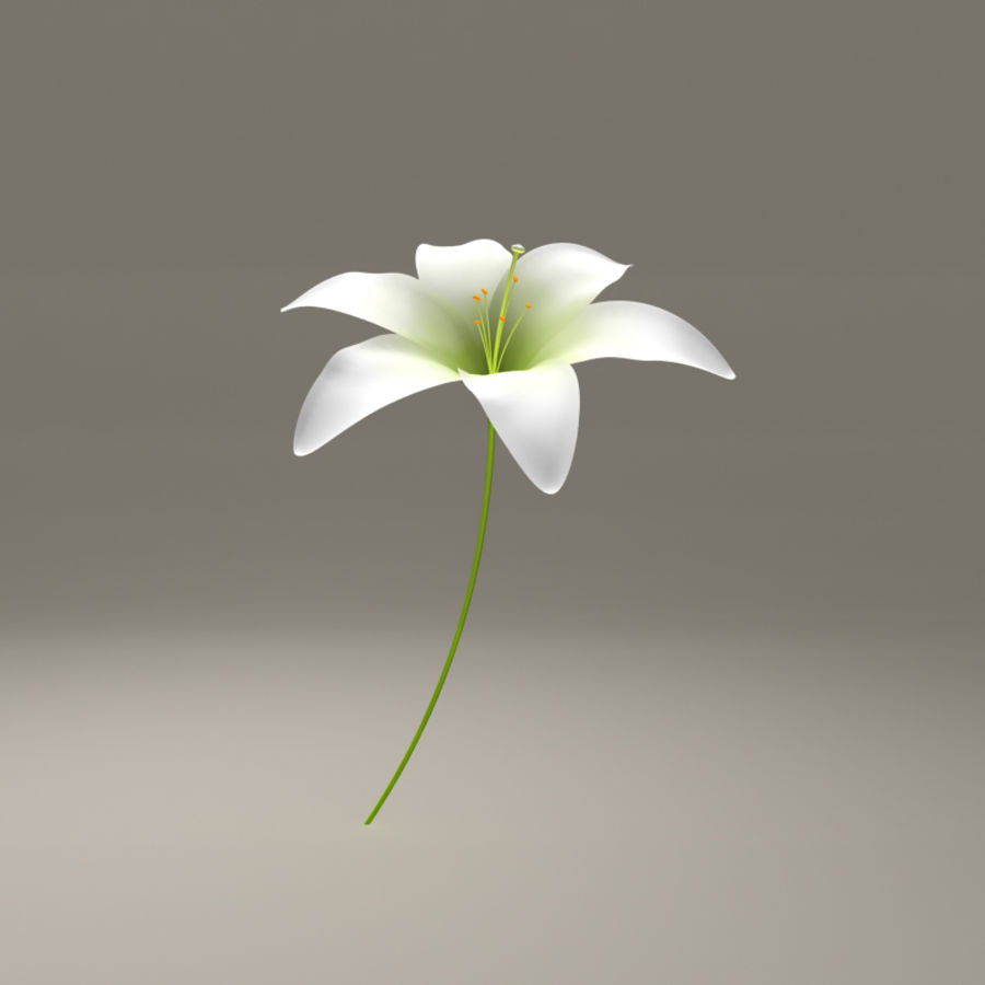 Blooming Lily Flower royalty-free 3d model - Preview no. 1