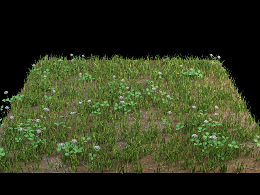 fleurs d'herbe au sol royalty-free 3d model - Preview no. 1