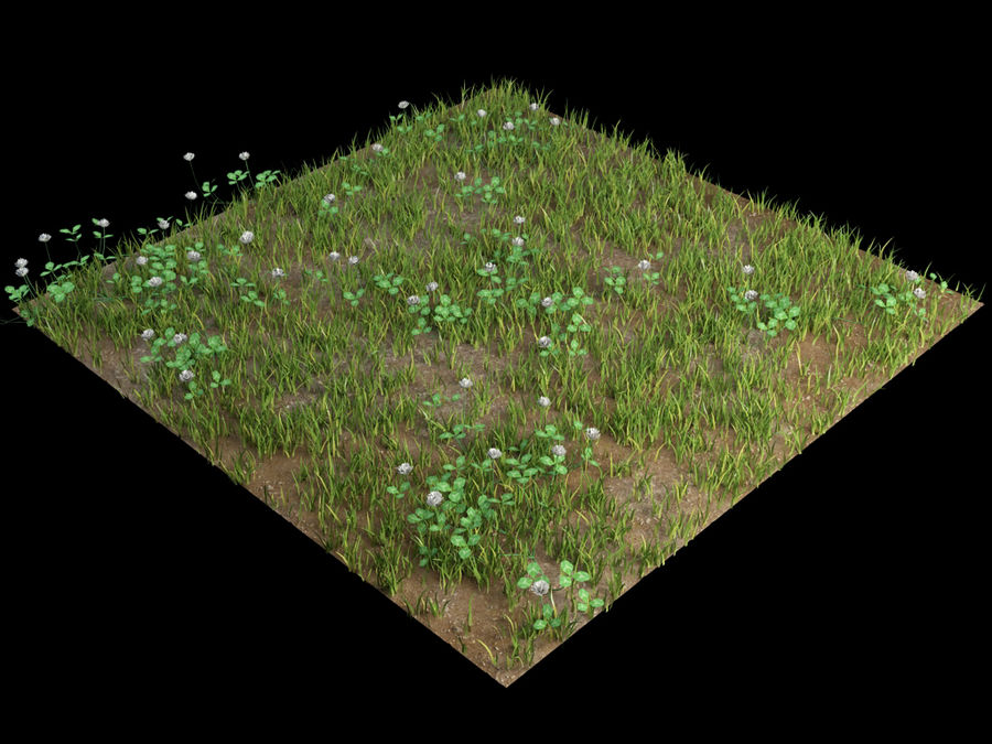 fleurs d'herbe au sol royalty-free 3d model - Preview no. 2