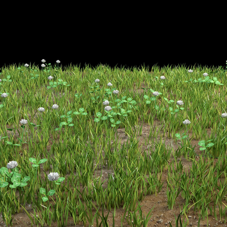 fleurs d'herbe au sol royalty-free 3d model - Preview no. 4