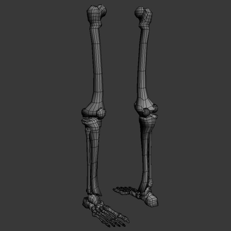 Skeleton Leg 3d Model 12 Obj X Fbx 3ds Blend Free3d