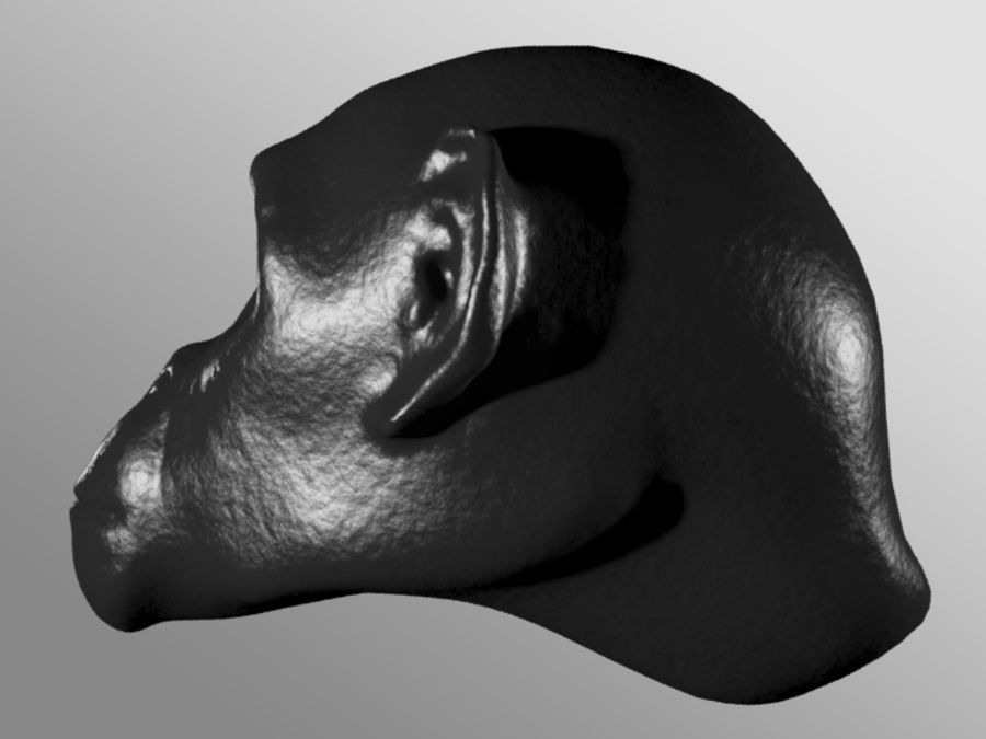 Ape Head royalty-free 3d model - Preview no. 6