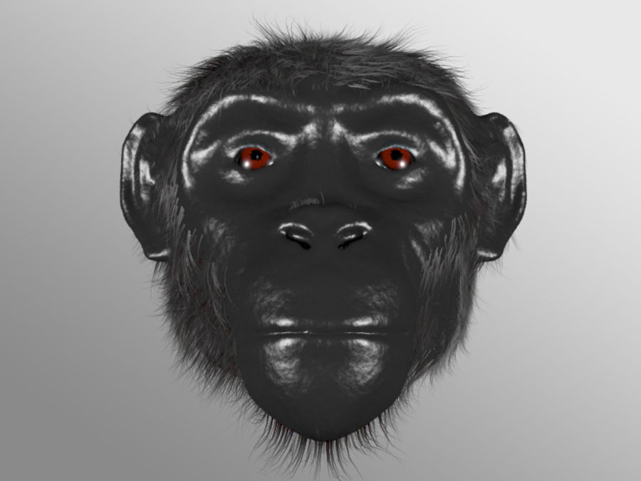 Ape Head royalty-free 3d model - Preview no. 1