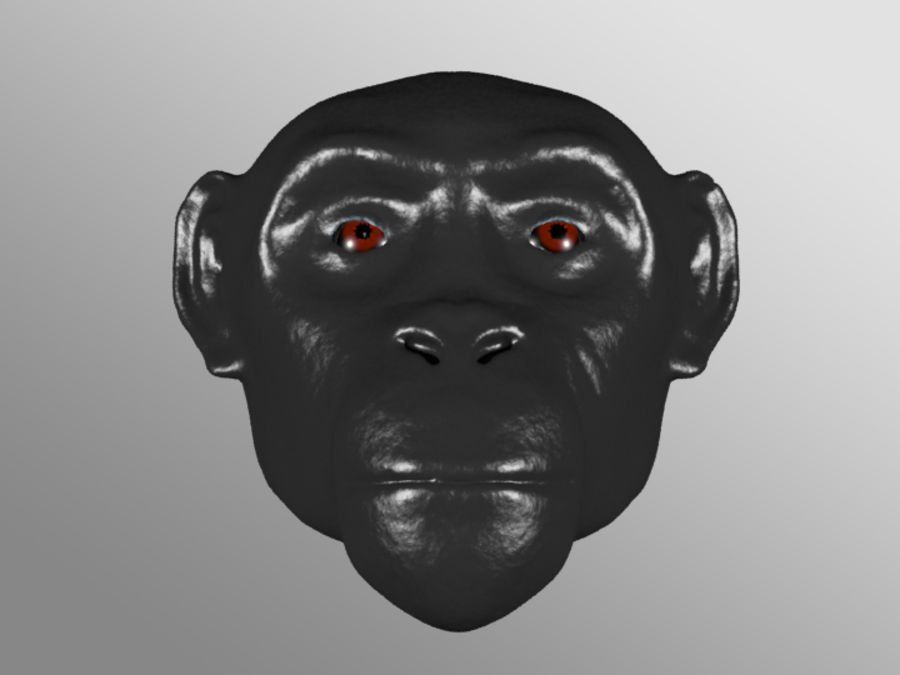 Ape Head royalty-free 3d model - Preview no. 2