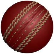 Pré-carregador de bola de críquete 3d model