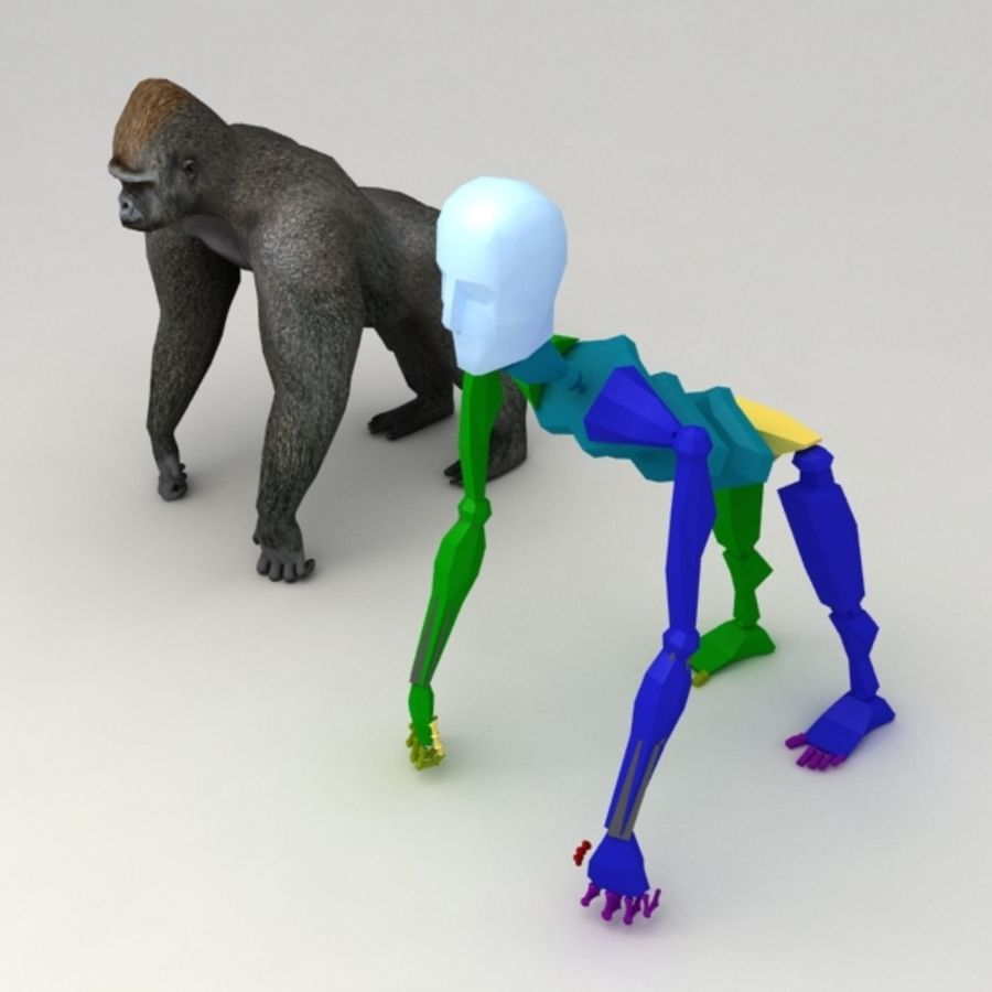 Gorilla rigged royalty-free 3d model - Preview no. 6