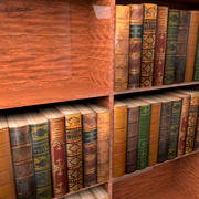 Books and Book shelf 3d model