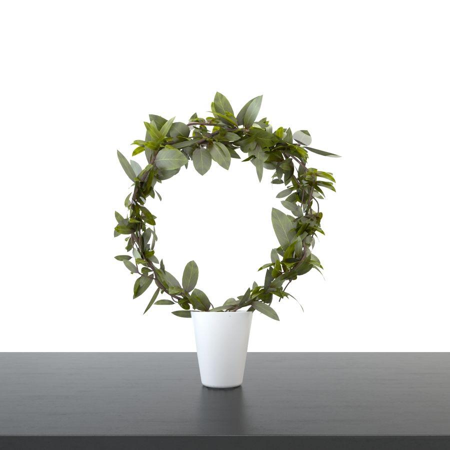 Pot de plantes réaliste royalty-free 3d model - Preview no. 1