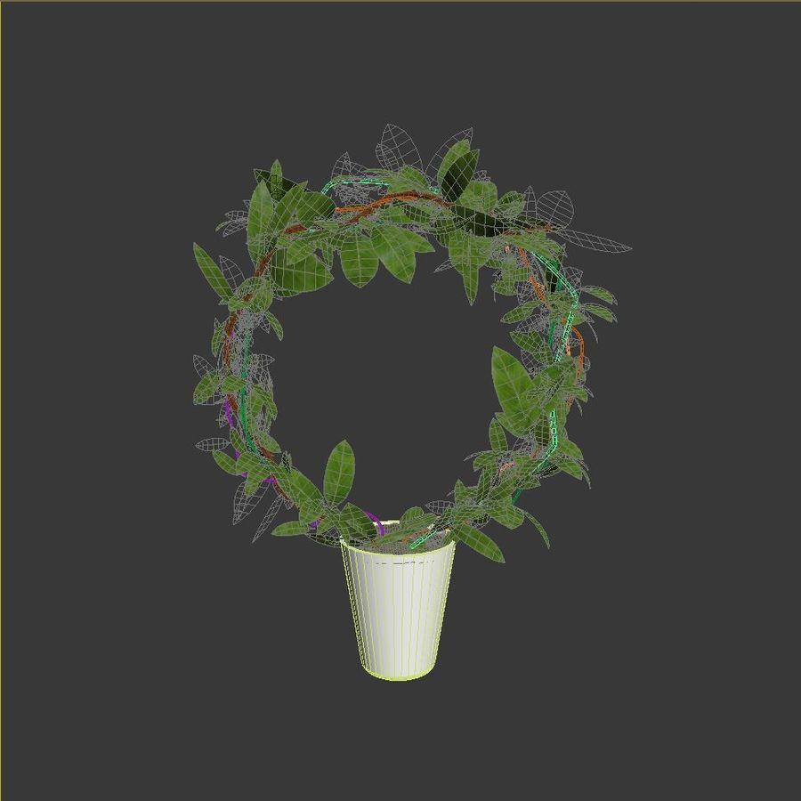 Pot de plantes réaliste royalty-free 3d model - Preview no. 5