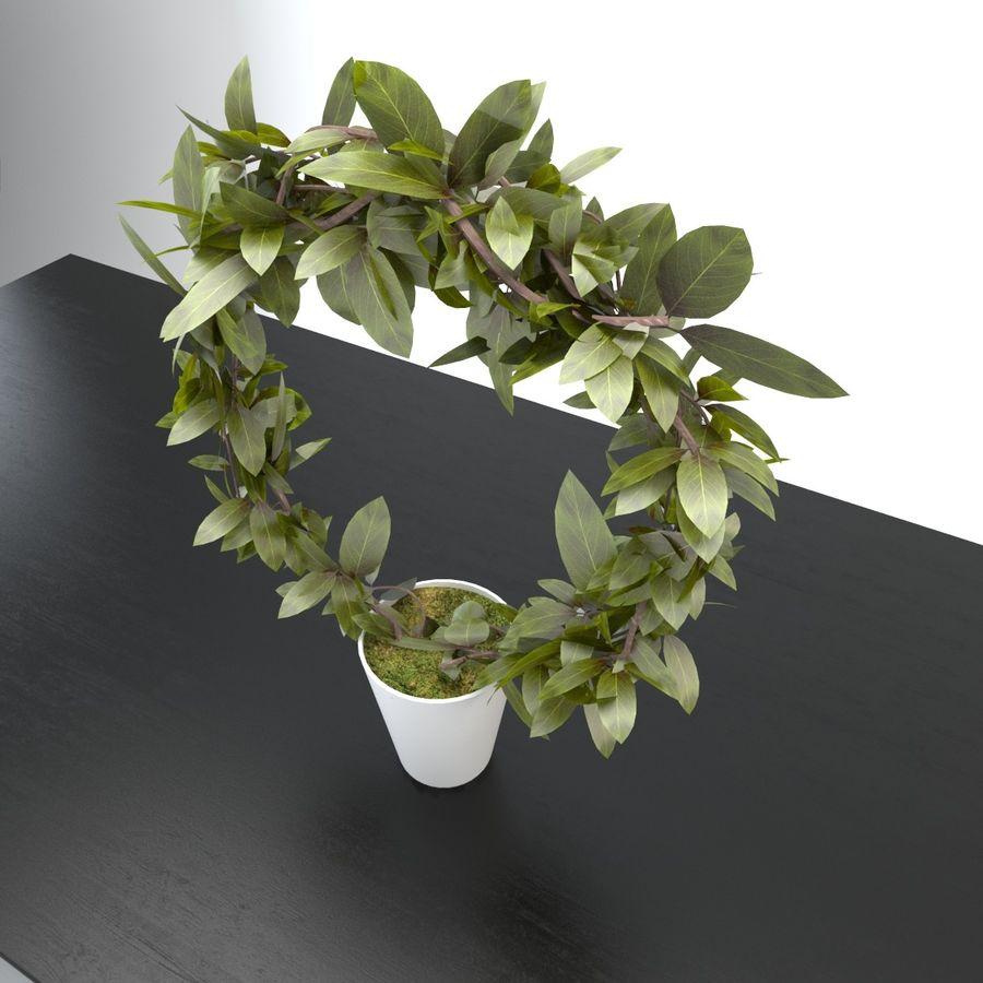 Pot de plantes réaliste royalty-free 3d model - Preview no. 2