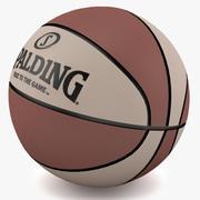 Koszykówka 3d model