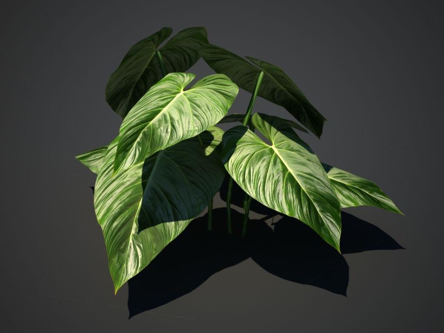 Тропическое растение royalty-free 3d model - Preview no. 2