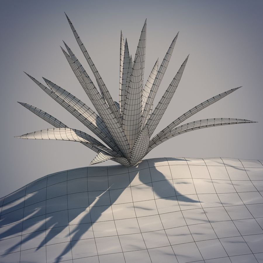 Desert Spikeplant royalty-free 3d model - Preview no. 4