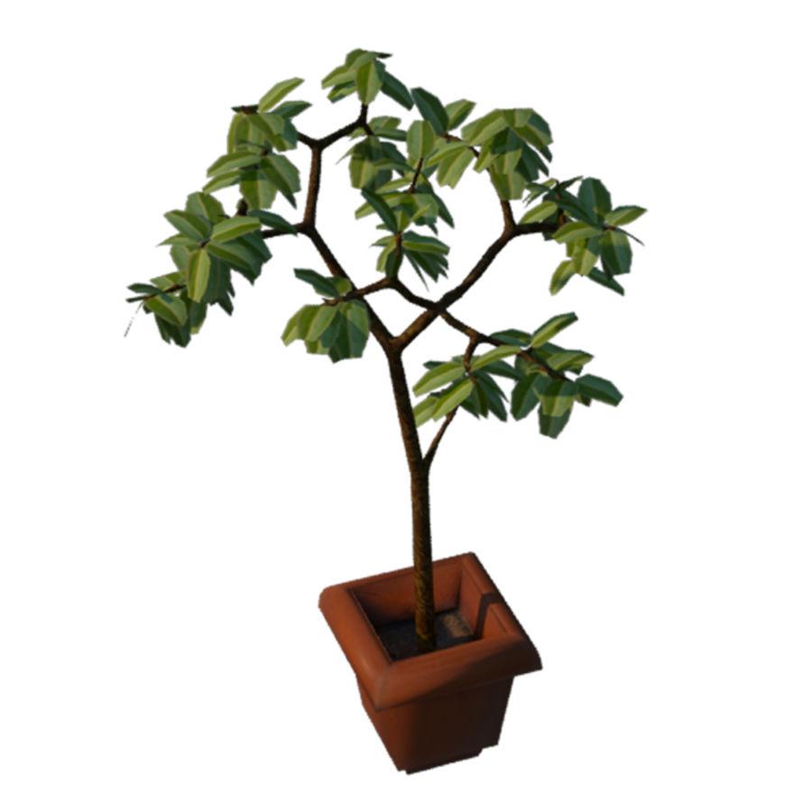 Pot Plant royalty-free 3d model - Preview no. 6