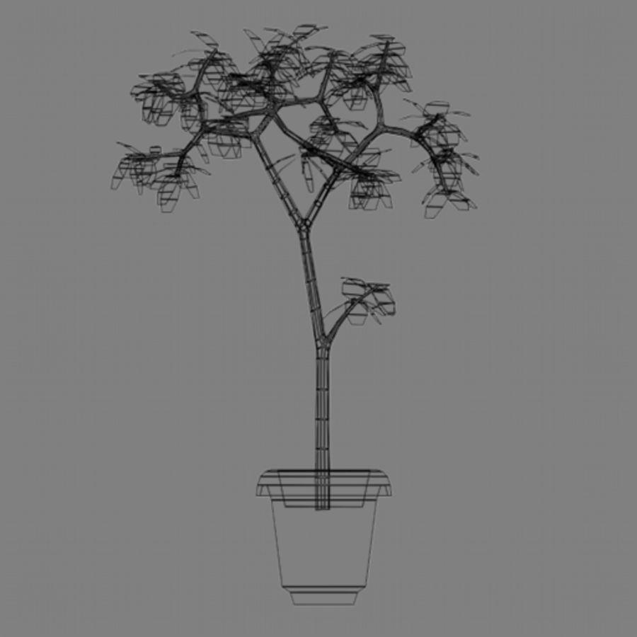 Pot Plant royalty-free 3d model - Preview no. 7