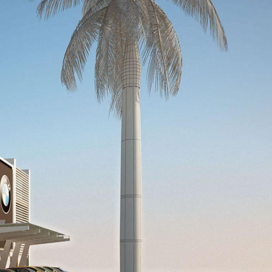 Royal Palm royalty-free 3d model - Preview no. 4