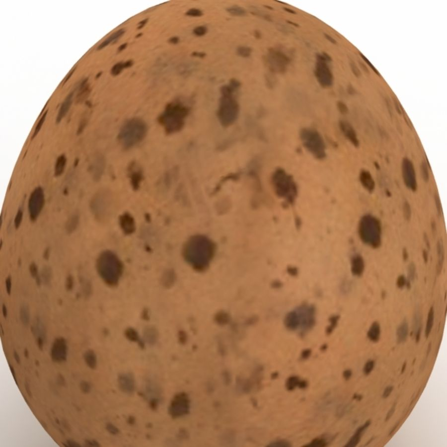 Eggs royalty-free 3d model - Preview no. 10