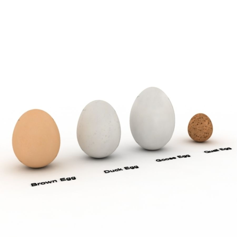 Eggs royalty-free 3d model - Preview no. 3