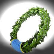 laurel silver wreath 3d model