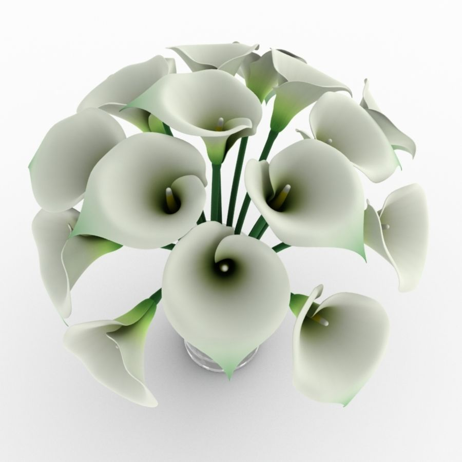 Calla Lily Flower royalty-free 3d model - Preview no. 4