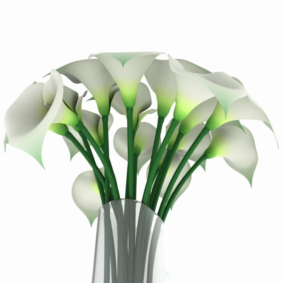 Calla Lily Flower royalty-free 3d model - Preview no. 5