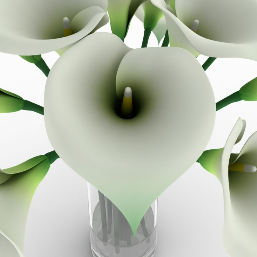 Calla Lily Flower royalty-free 3d model - Preview no. 6