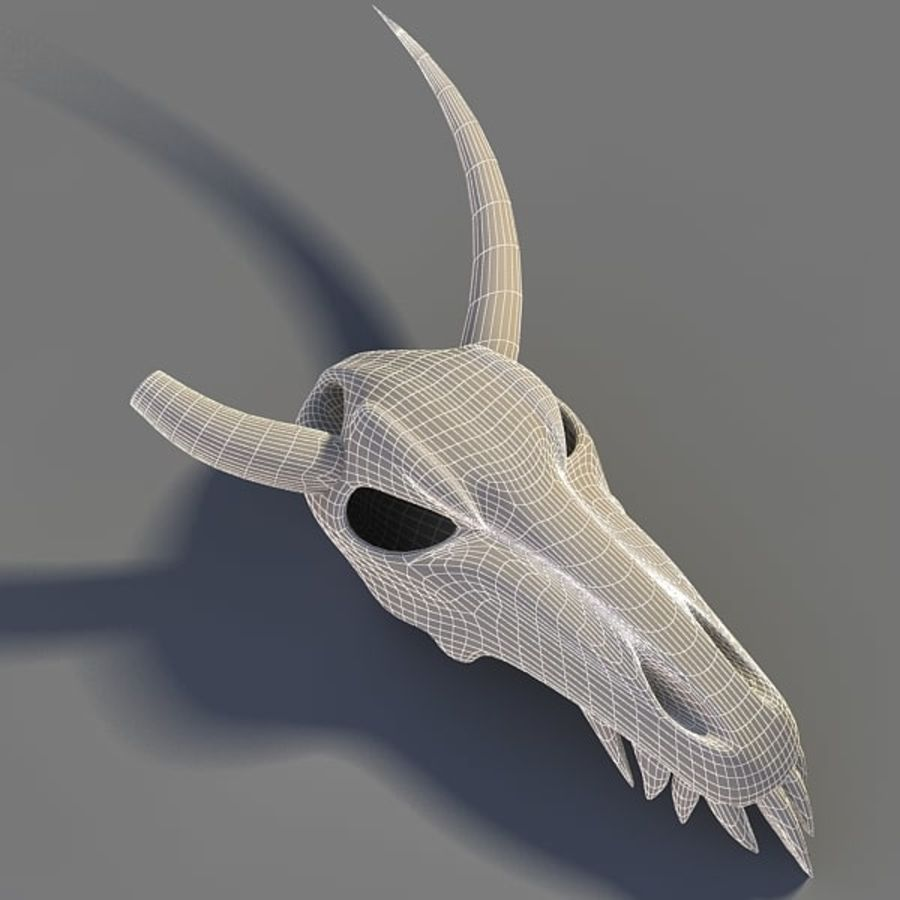 Animal Skull royalty-free 3d model - Preview no. 7