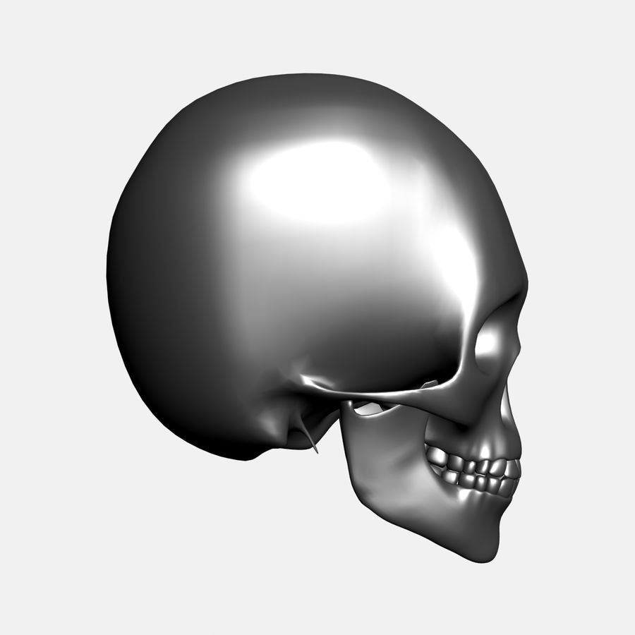 Metal Skull royalty-free 3d model - Preview no. 8