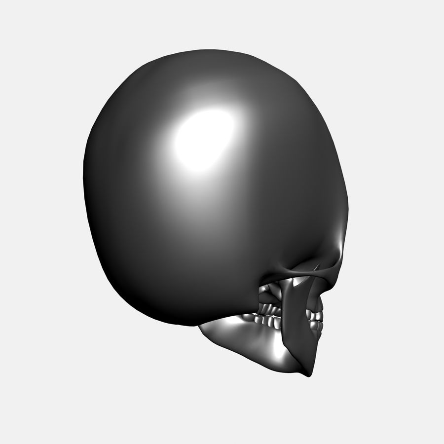 Metal Skull royalty-free 3d model - Preview no. 7