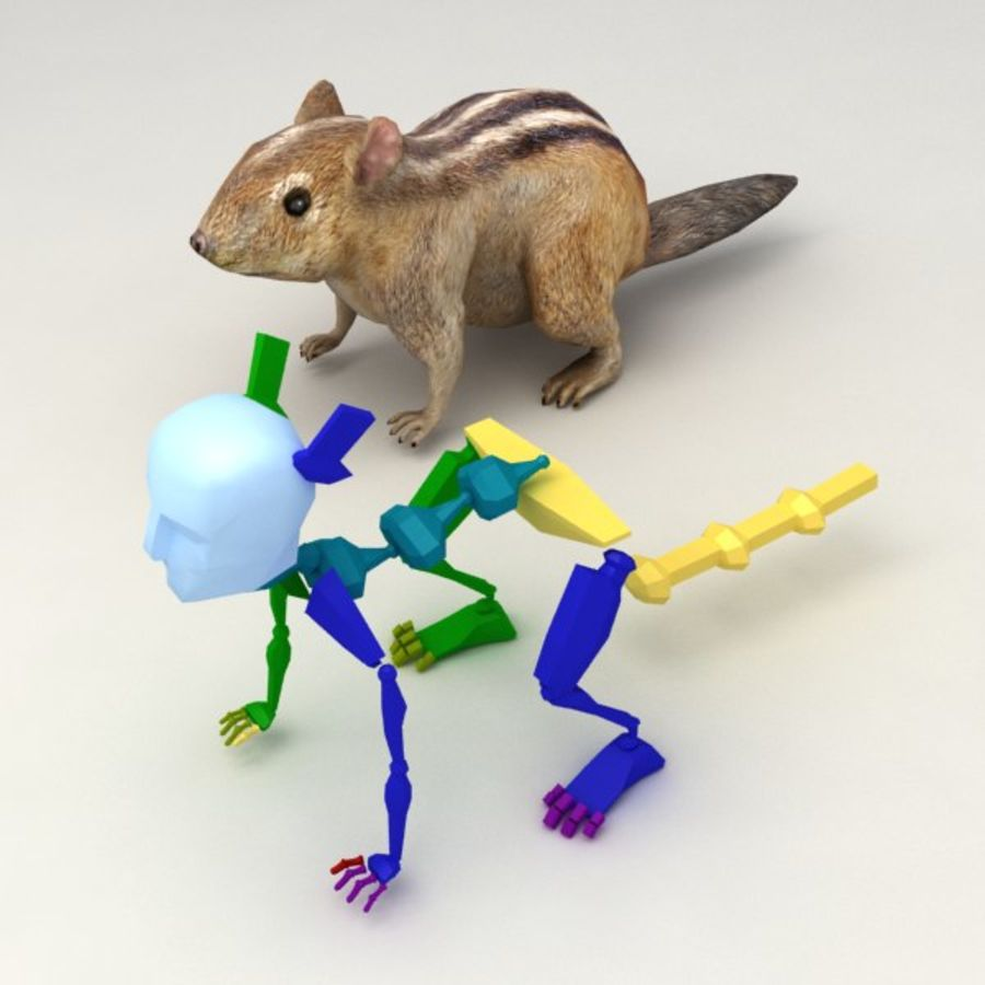 Chipmunk lowpoly model royalty-free 3d model - Preview no. 6