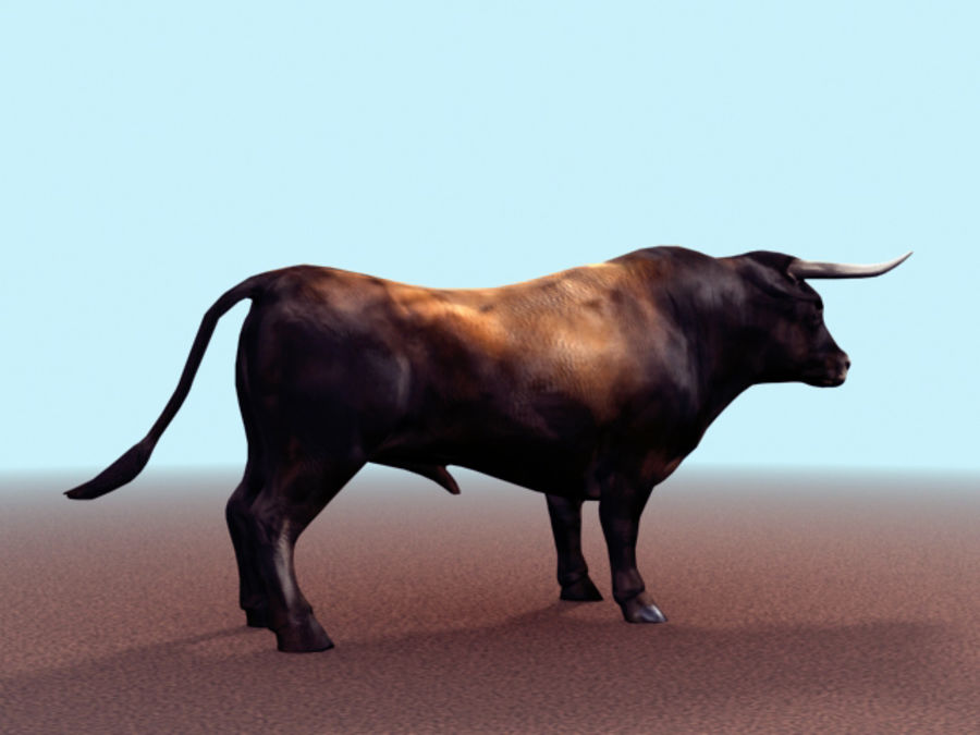 Bull royalty-free 3d model - Preview no. 4