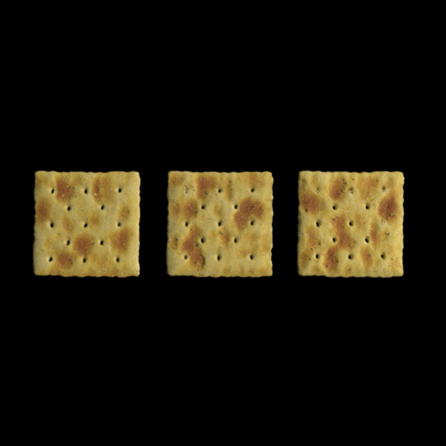 Saltine Crackers royalty-free 3d model - Preview no. 1