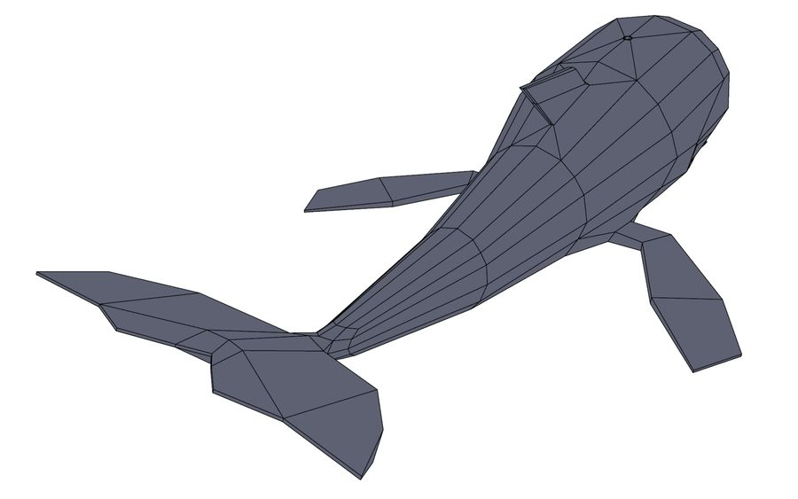 MobyDick-Wal royalty-free 3d model - Preview no. 11